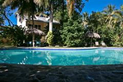 Vecinos Condos screened from pool by trees