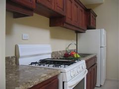 GE fridge + stove + beautiful countertop with double sink