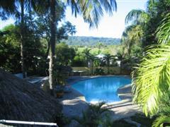 Gorgeous large pool in lush backyard garden