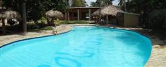 gorgeous large pool with shaded palapas